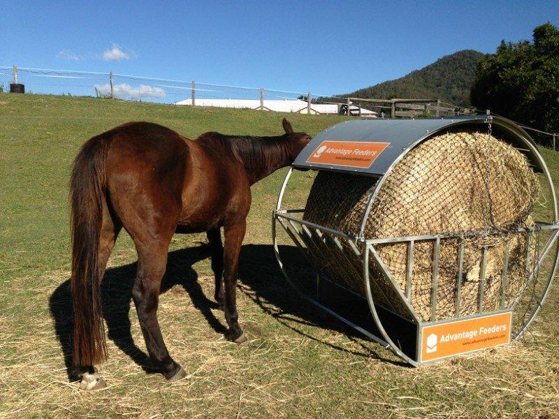 4cm GutzBusta Round Bale Hay Net in an Advantage hay feeder