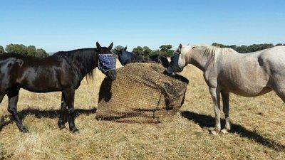GutzBusta® Round Bale Hay Nets