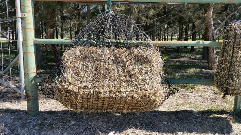 4cm GutzBusta Large Hay Net - 60ply