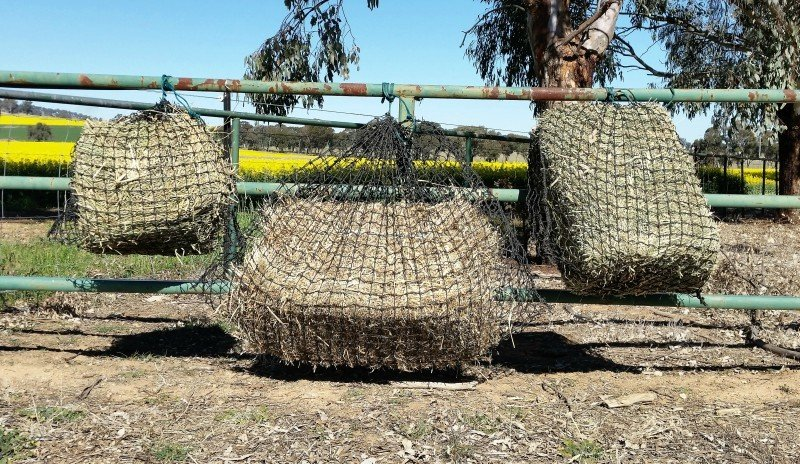Small, Large and Medium GutzBusta Slow Feed Hay Nets - 60ply