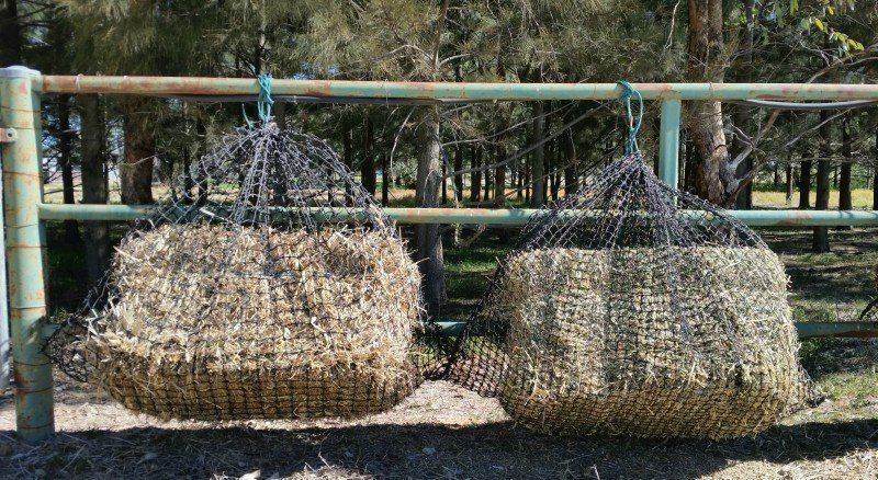 Large GutzBusta® Slow Feed Hay Nets GB-4CM LRG  60PLY