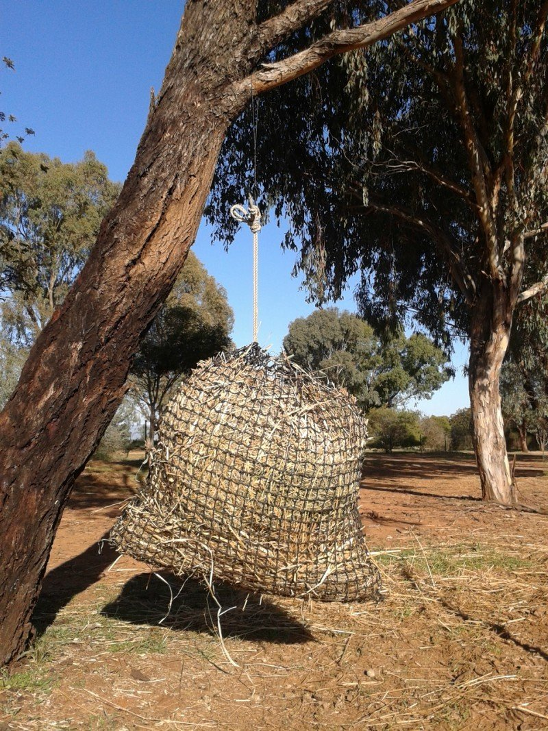 3cm Medium GutzBusta Slow Feed Hay Net