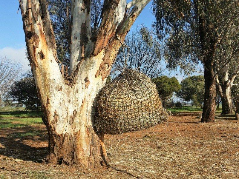 4cm Small GutzBusta Hay Net  48ply