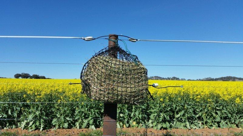 4cm Small GutzBusta Hay Net  60ply