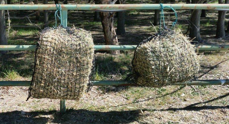 Medium and Small GutzBusta Slow Feed Hay Net 60ply