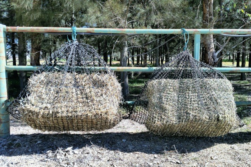 4cm and 3cm Large GutzBusta Slow Feed Hay Nets