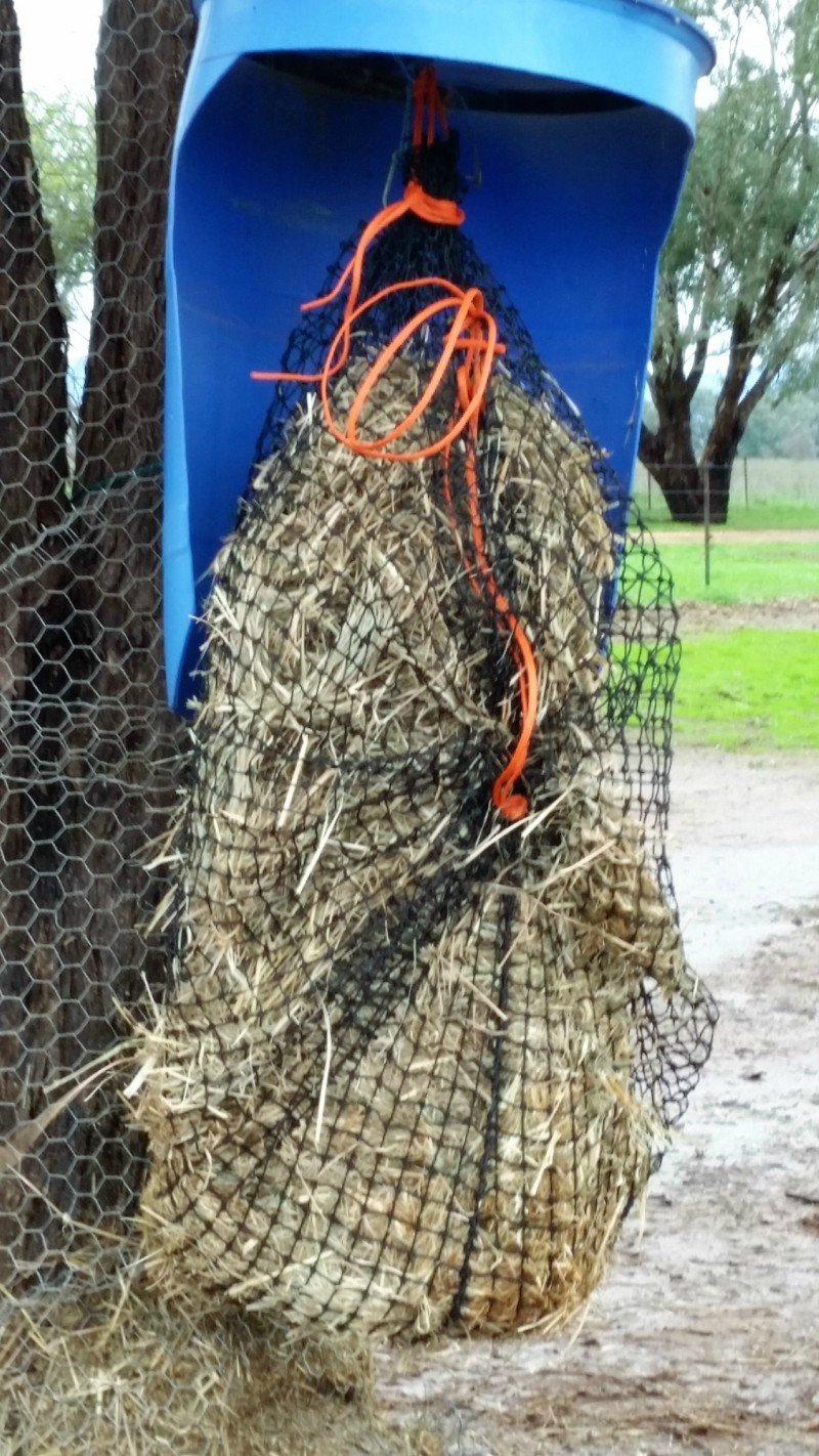3cm GutzBusta Large Slow Feed Hay Net - 48ply