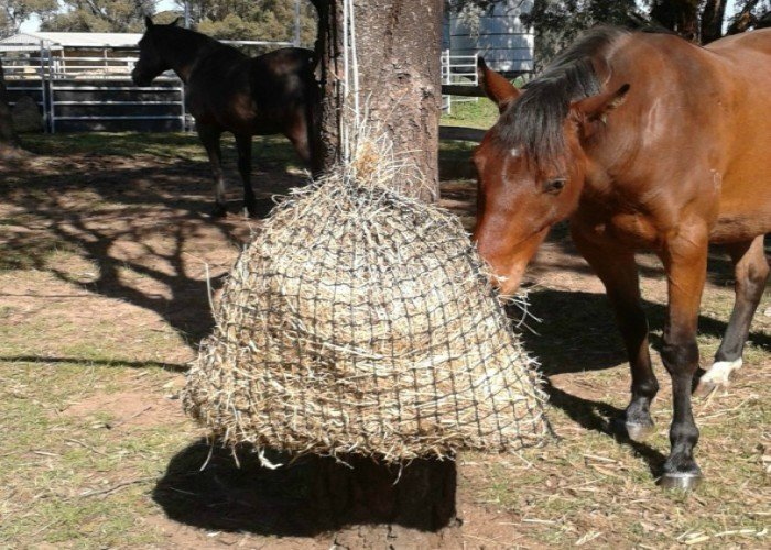 Medium GutzBusta® Slow Feed Hay Net