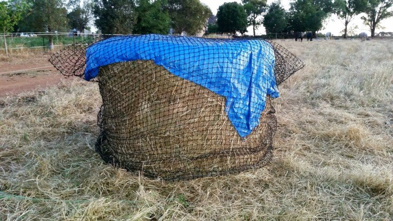 4cm GutzBusta Slow Feed Hay Net for 5x4 Round Bale 48ply.  Tarp put underneath net as wet weather expected.