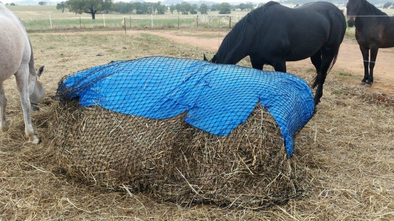 Partially eaten 5x4 Round Bale with GutzBusta Hay Net and tarp for wet weather 48ply