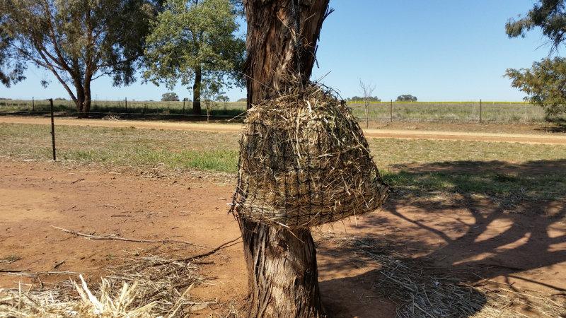 6cm Small GutzBusta Hay Net