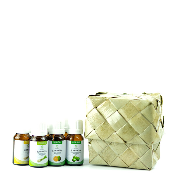 Holiday Full Essential Oil Bundle with Pandan Box