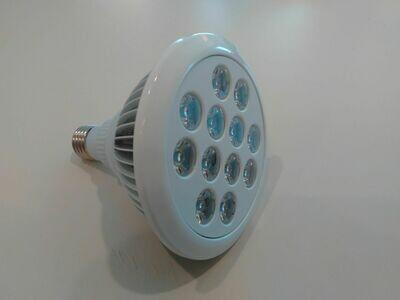 Handheld LED Light