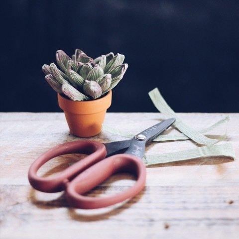 Paper Succulents - March 25 00028