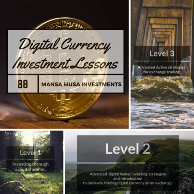 Digital Currency Investment Lessons