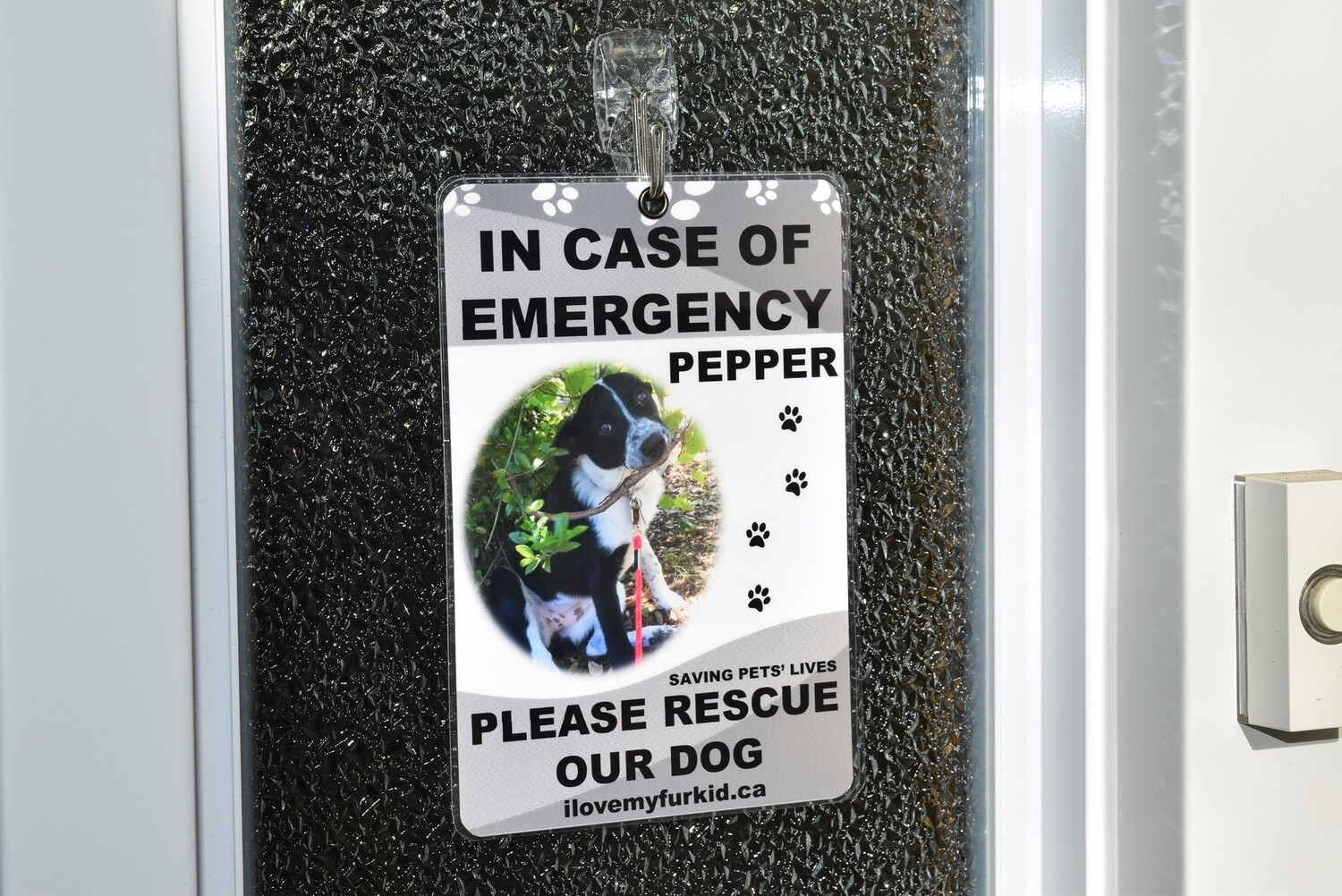 Emergency Pet Sign (One photo)