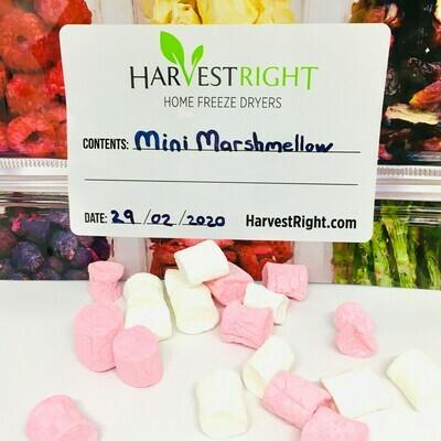Freeze Dried Mini Marshmallows