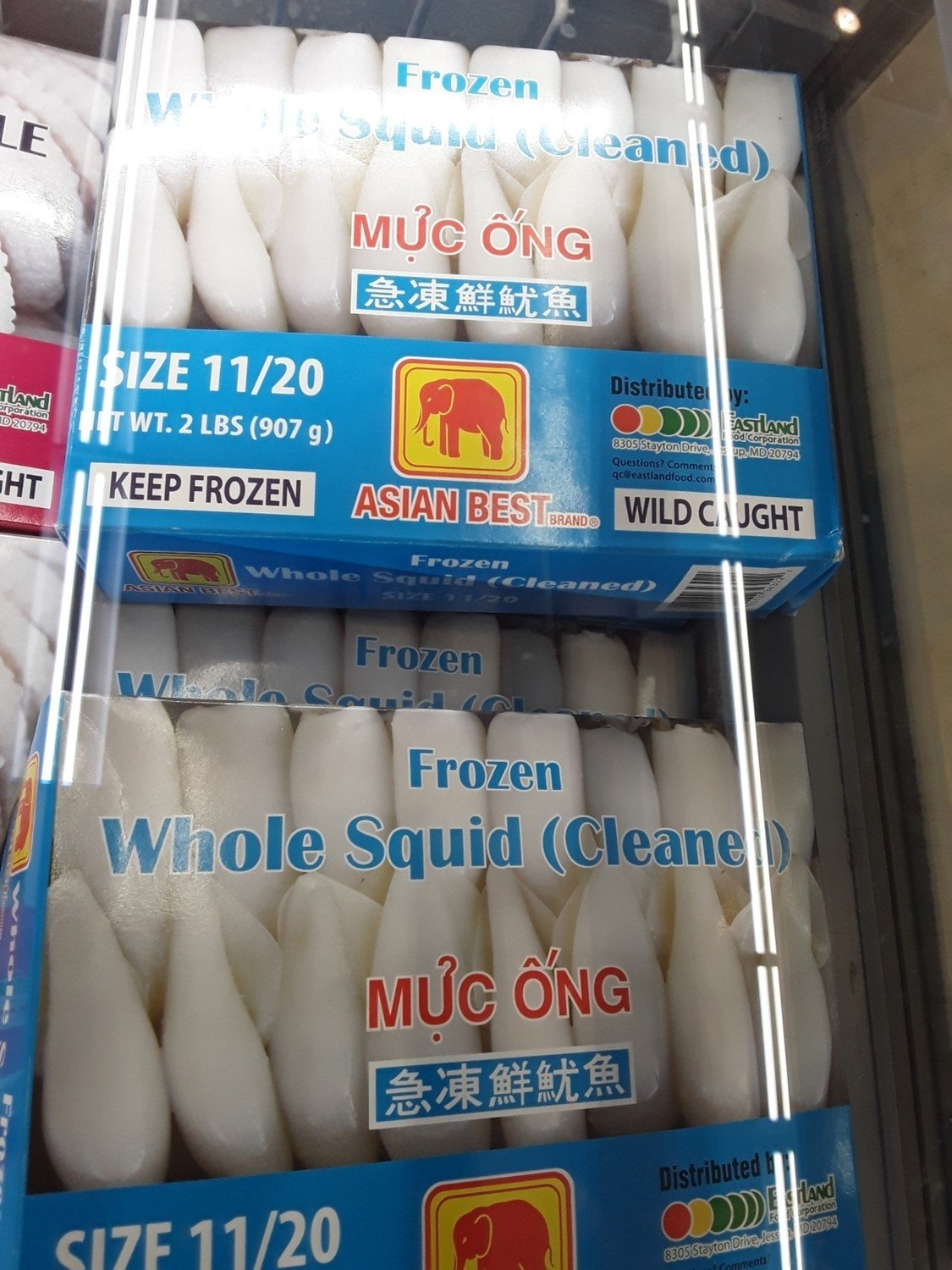 【Welfresh Seafood】Frozen Whole Squid(cleaned)急冻鲜鱿鱼 2lb(每天上午9点截单)