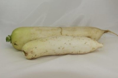 【Welfresh Produce】DAIKON 萝卜, ~2lb/pk(每天上午9点截单)