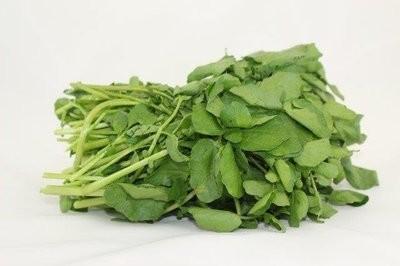 【Welfresh Produce】WATERCRESS 西洋菜, 1 ea(每天上午9点截单)