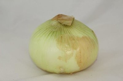 【Welfresh Produce】YELLOW ONION 黄洋葱, ~1lb/pk(每天上午9点截单)