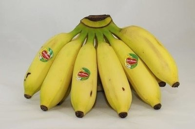 【Welfresh Produce】MANZANO BANANA 小芭蕉, ~1lb/pk(每天上午9点截单)