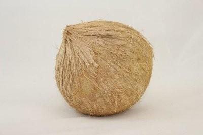 【Welfresh Produce】COCONUT 椰子, 1 ea(每天上午9点截单)