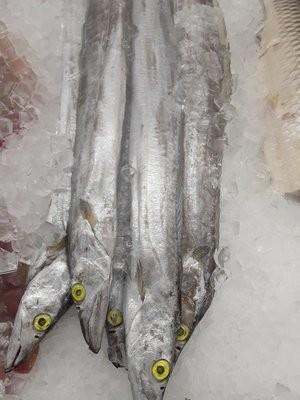 【Welfresh Seafood】BELT FISH 带鱼 ~2.5lb(每天上午9点截单)