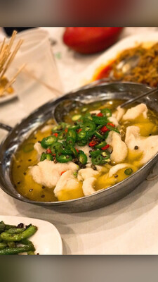 ZWCD【滋味成都】藤椒鱼 Boiled Fish with Green Pepper Sauce (晚餐不配饭)