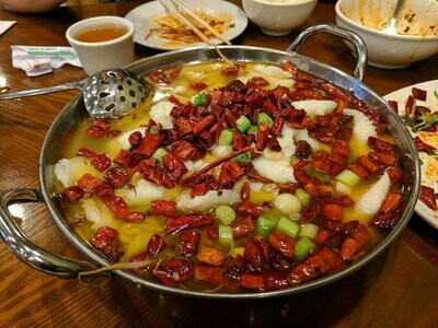 ZWCD【滋味成都】水煮鱼片 Boiled Sliced Fish in Hot Sauce (晚餐不配饭)