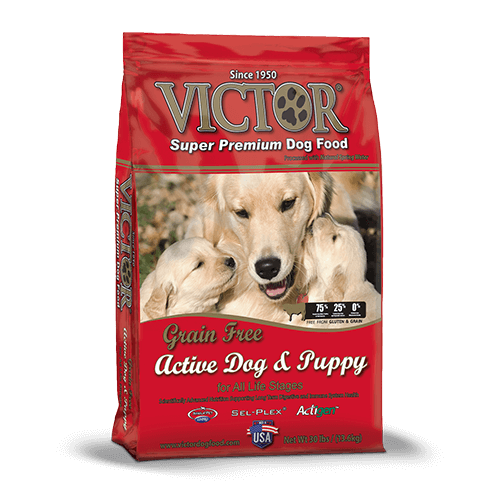 Victor Grain Free Active Dog/Puppy 30lb 013-024-15