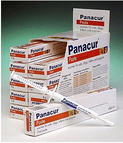 Panacur Paste - Панакур паста 18.75%  для кошек и собак, уп. 5 г