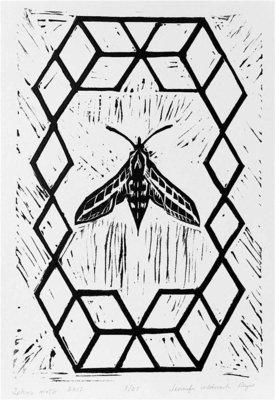 Sphinx Moth linocut print
