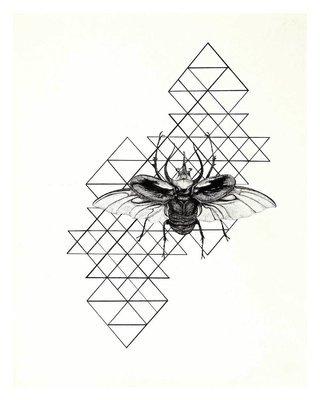 Chalcosama atlas beetle giclee