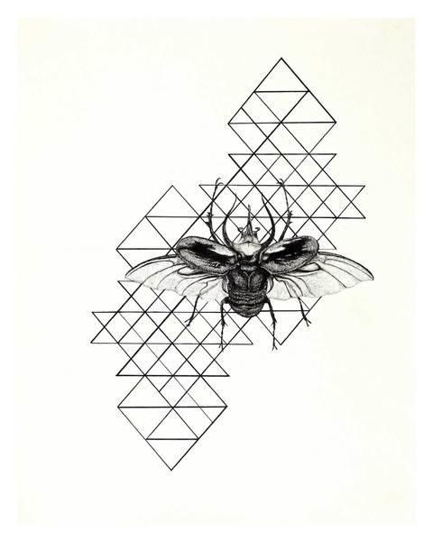 Wildermuth Reyes Art