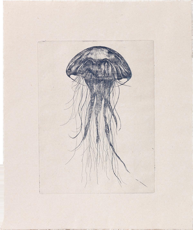 Medusa - Lithograph 00024