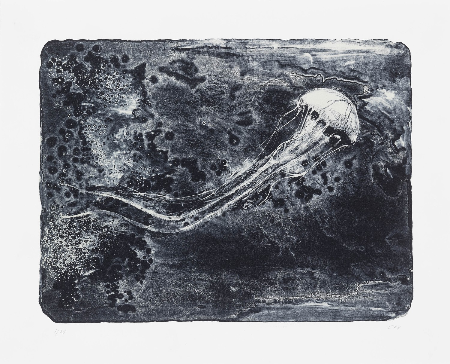 Tiny Creature - Lithograph