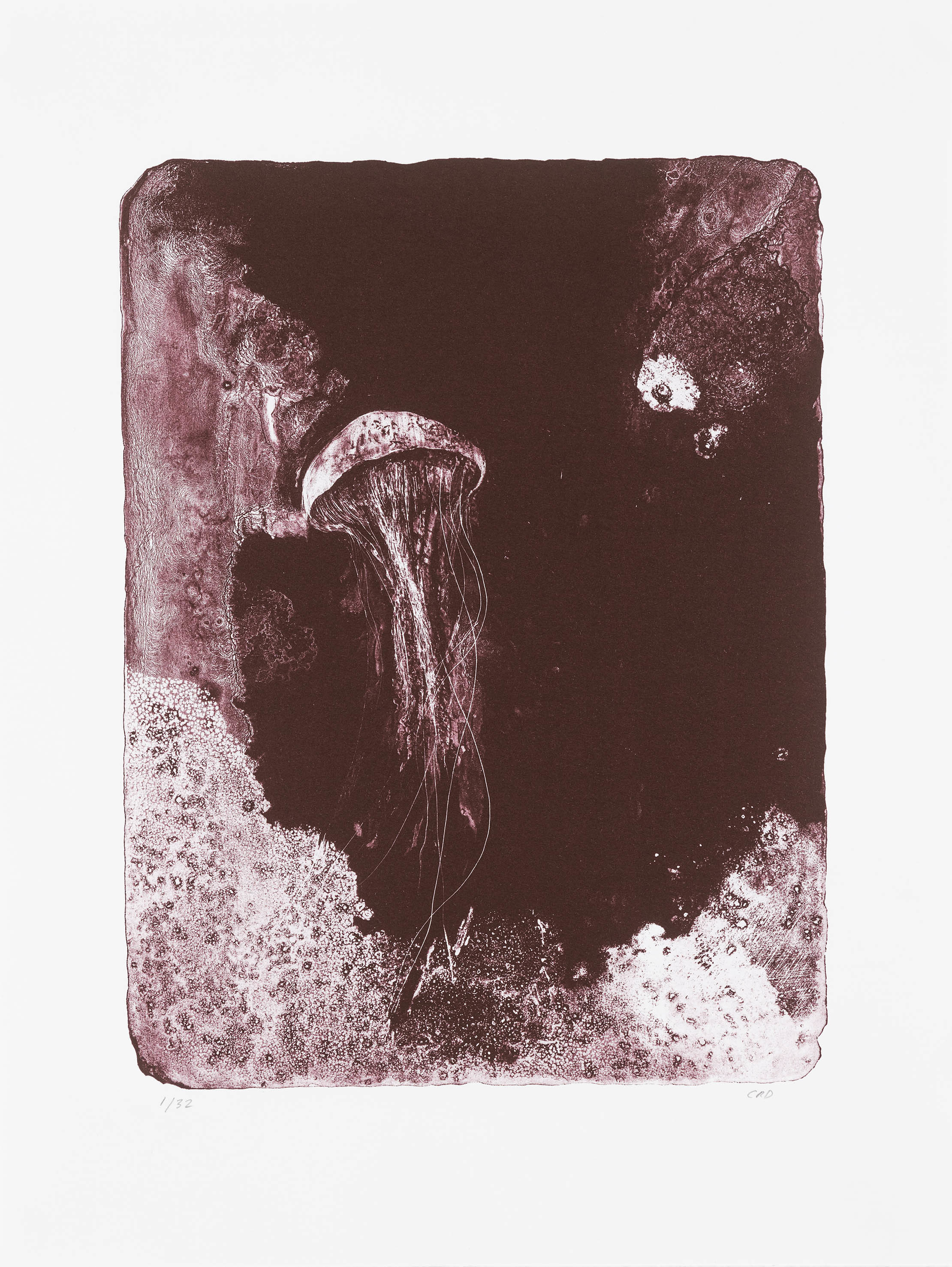 Totem Jellyfish - Lithograph 00026
