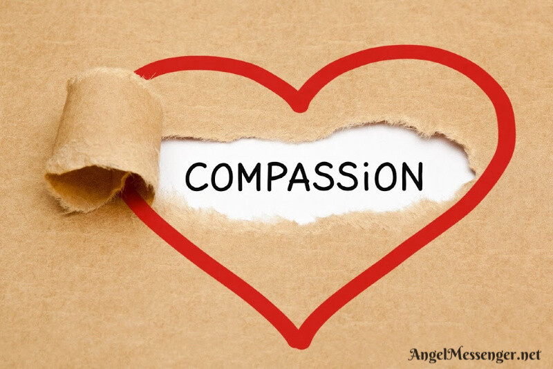 Compassion in Action Giveaway (Enter Giveaway Here - MARCH 9TH - APRIL 24TH!)