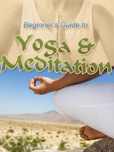 The Beginner's Guide to Yoga & Meditation
