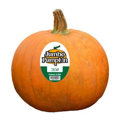 Pumpkin - Custom Plu Sticker 1,000 Stickers