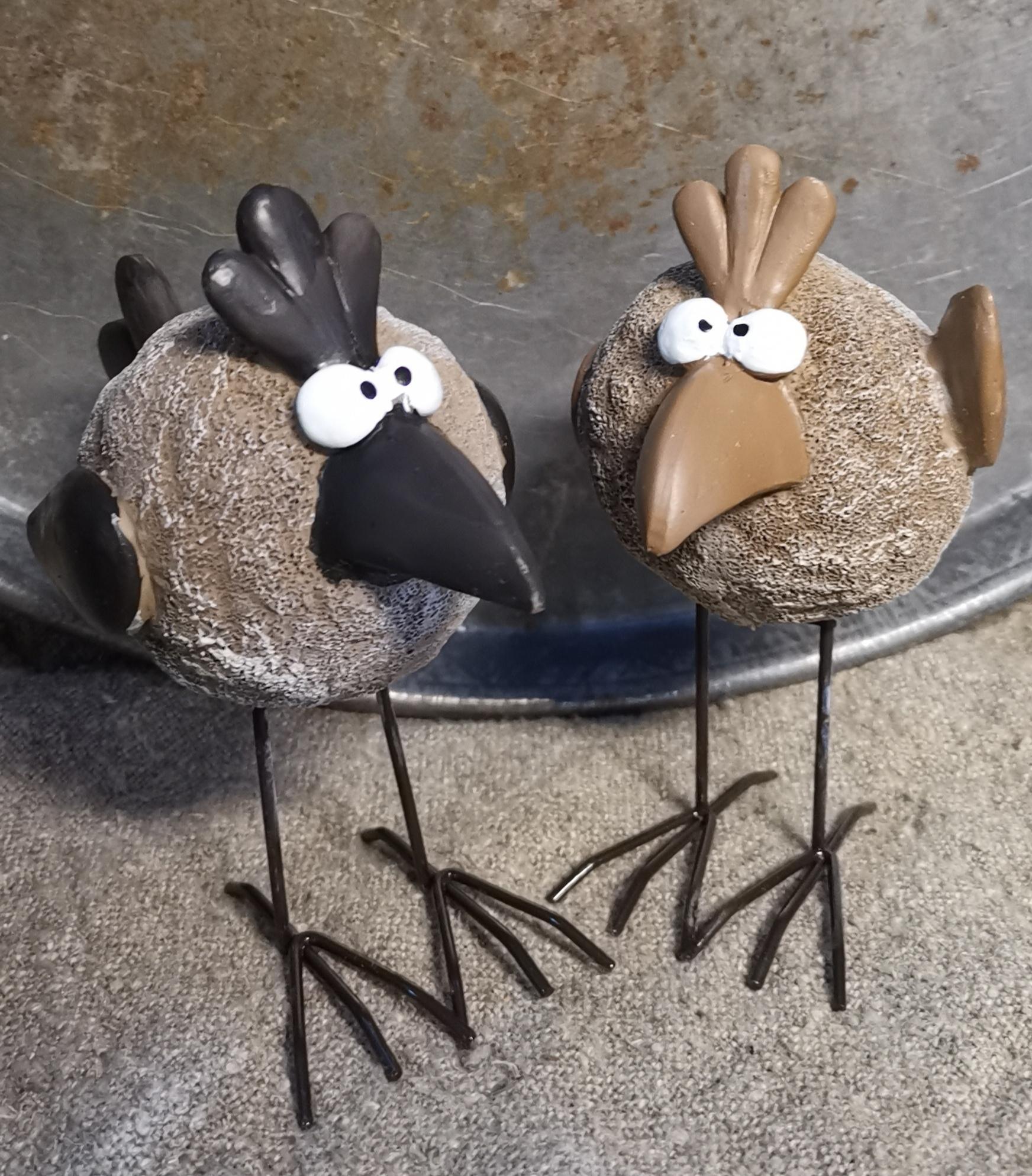 Vogel Tweety 01794