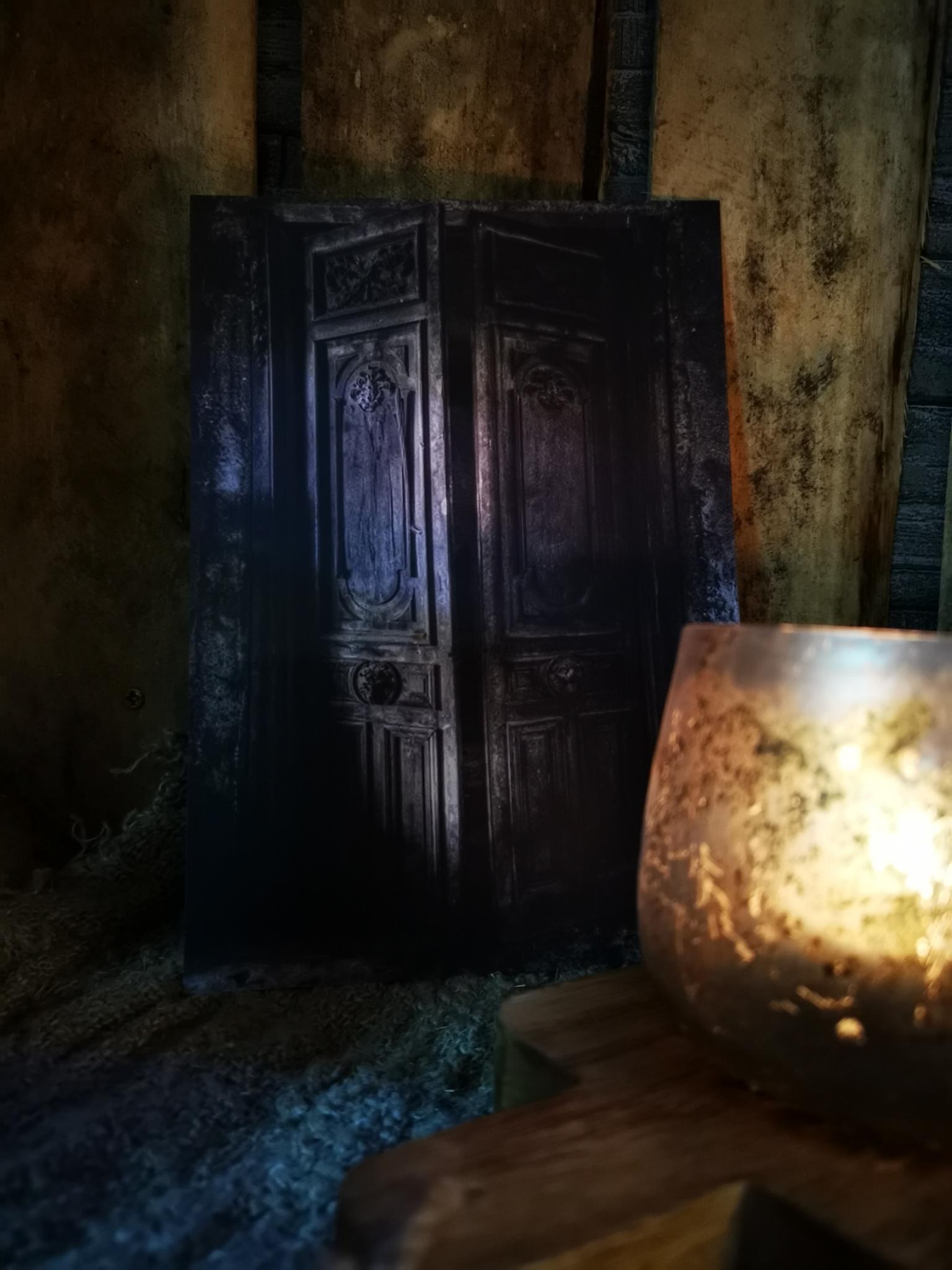 Sobere prent A5 oude deur 01821
