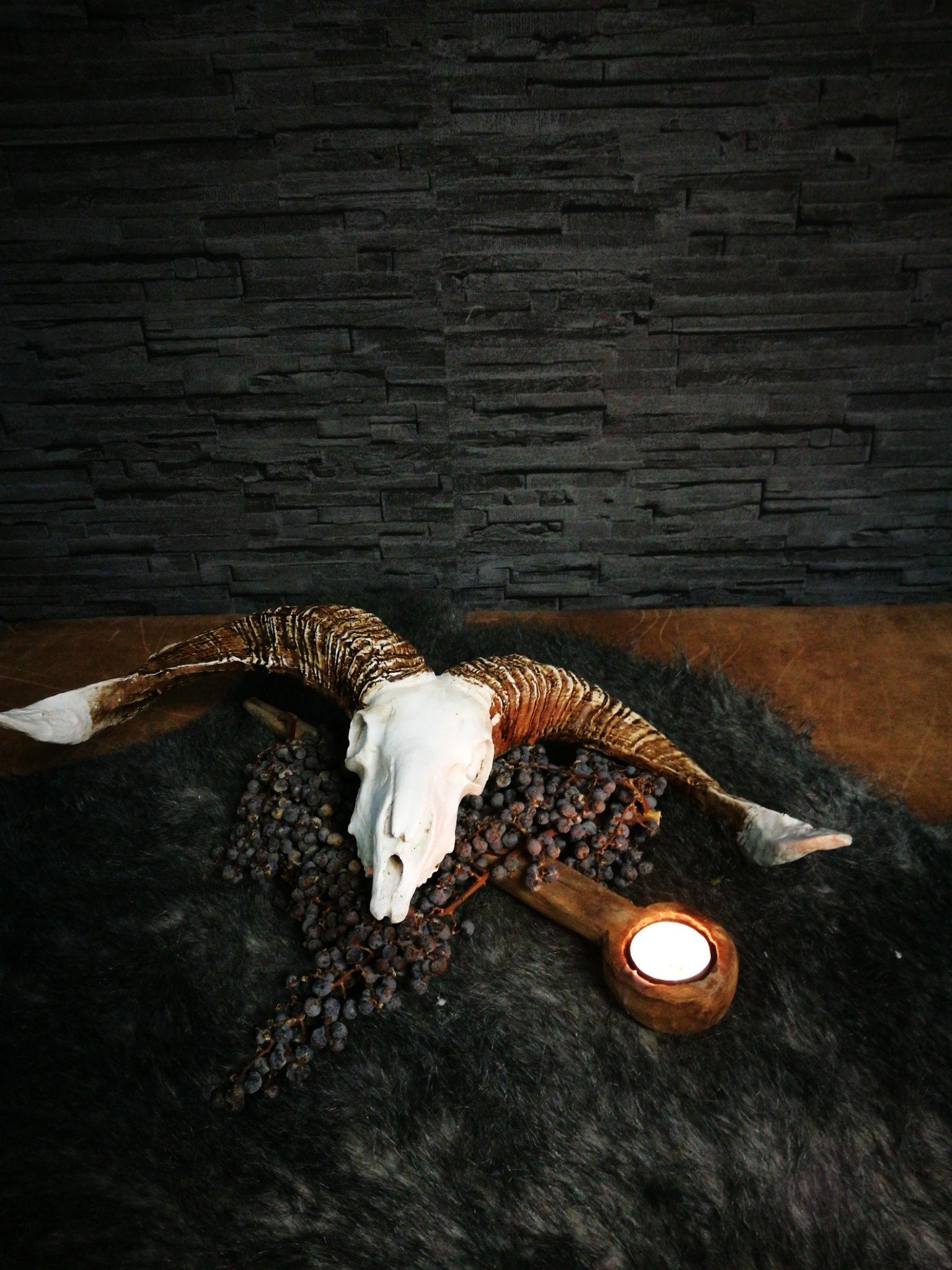 Skull geit 00314