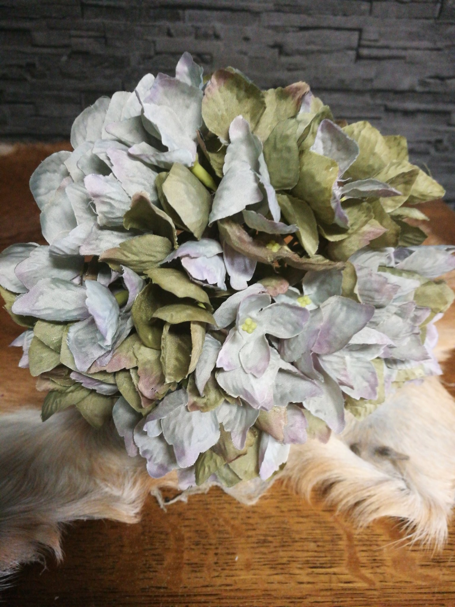 Hydrangea grijs groen 01202