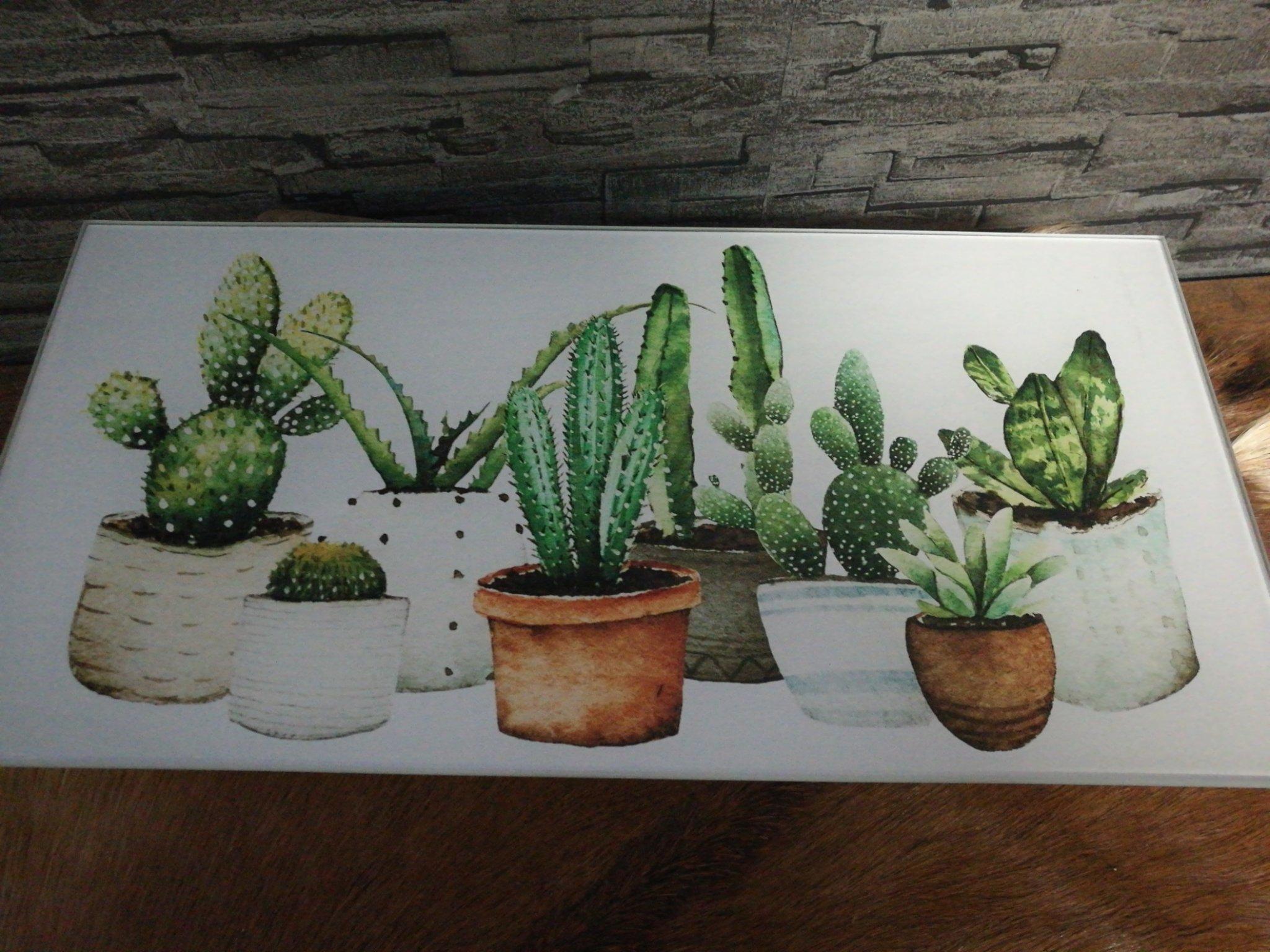 Glazenlijst cactussen 01232