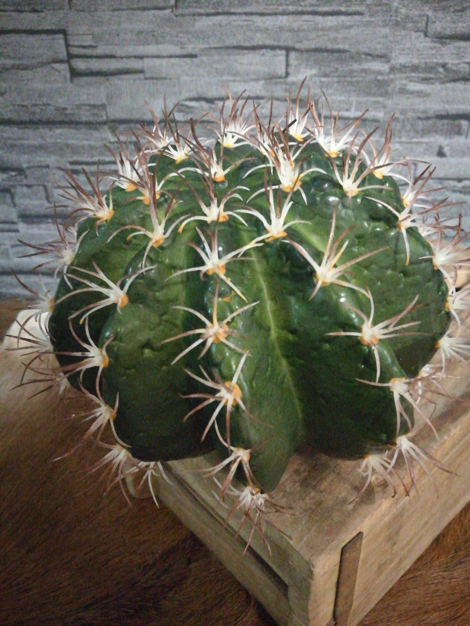 Kunst cactus 18cm 01237