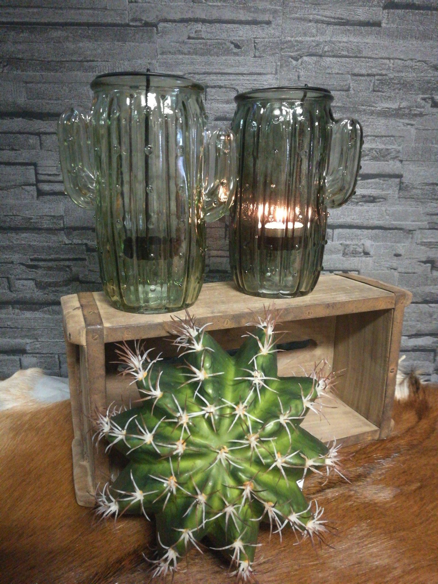 Sfeerlicht glas cactus licht 01244