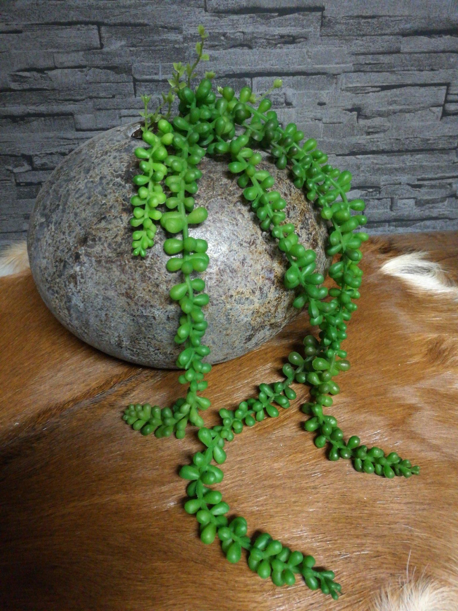 Vetplant kunst groen 01271