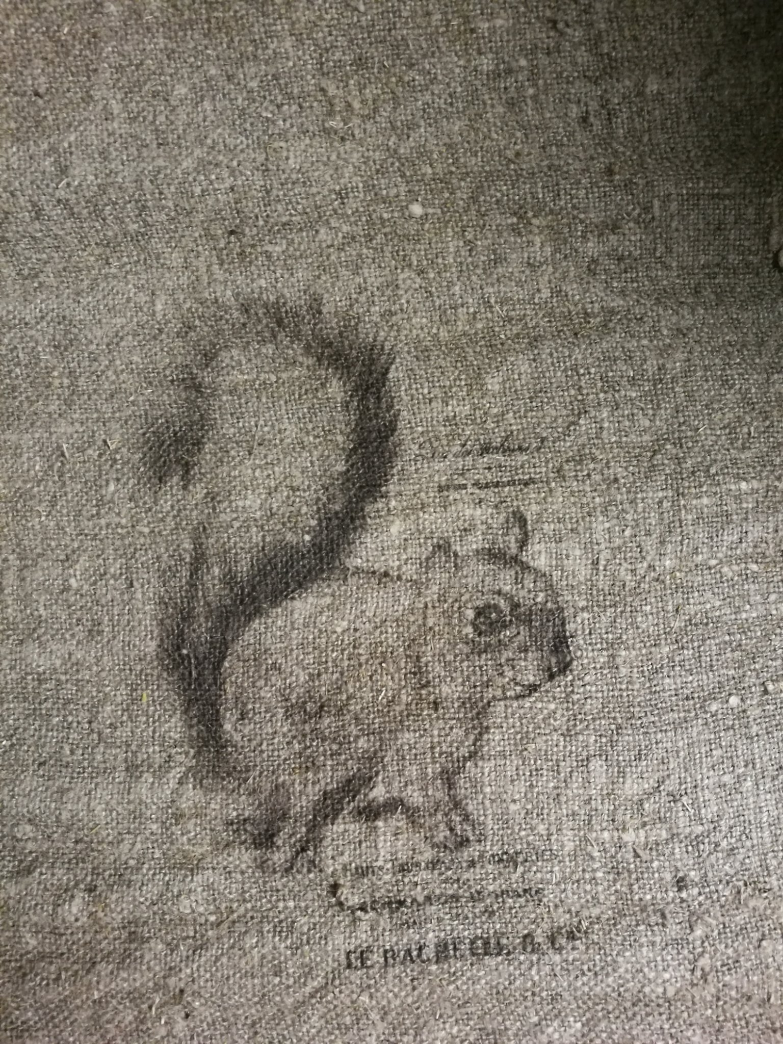 Shabby doek eekhoorn 30x45 01421